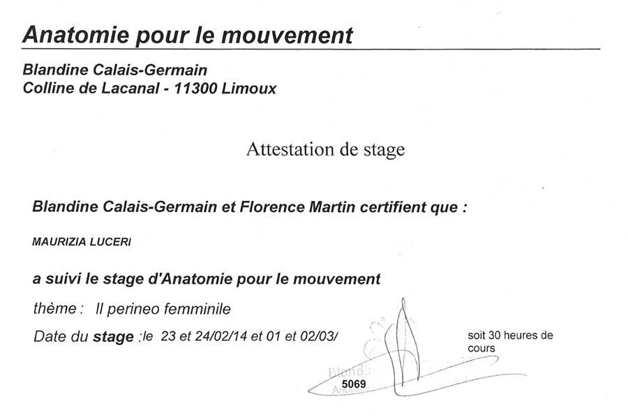 Maurizia Luceri - Attestato di partecipazione